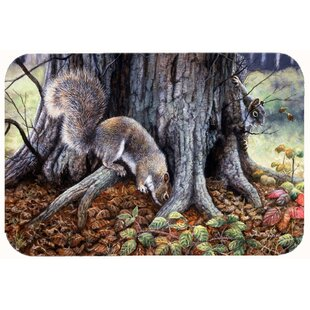 Barr Squirrels Around the Tree Kitchen/Bath Mat By Zoomie Kids