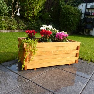 Lucca Planter Box By Freeport Park