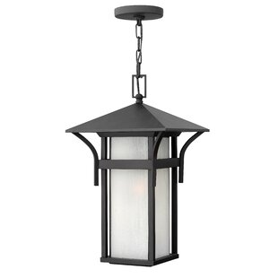 Harbor 1-Light Outdoor Hanging Lantern