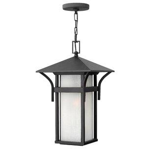 Harbor 1-Light Outdoor Hanging Lantern