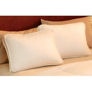 Gussetted Triple Chamber Queen Pillow by Alwyn Home
