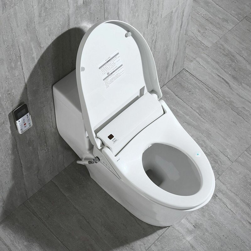 Woodbridge Dual Flush Elongated One Piece Toilet With Bidet Seat Seat Included Reviews Wayfair