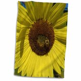 Sunflower Towels Wayfair