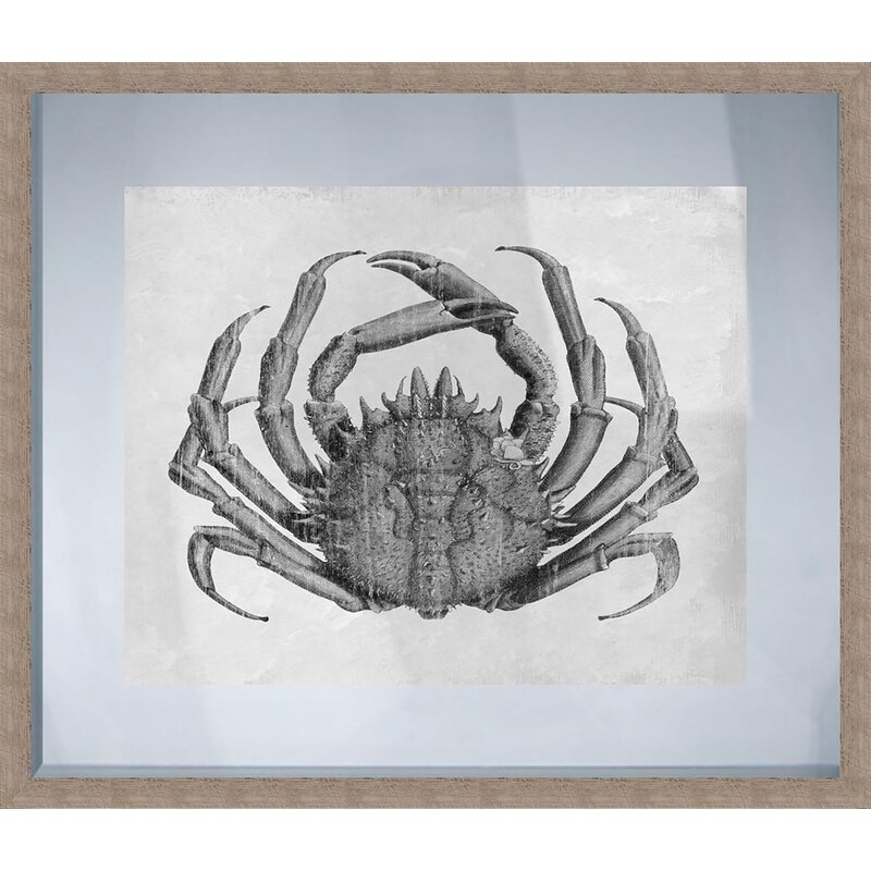 Ptm Crab Picture Frame Graphic Art Print On Paper Wayfair