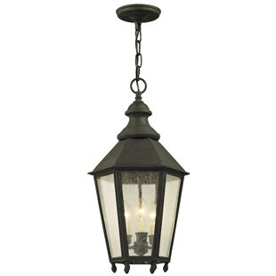 Aaryahi 3-Light Outdoor Hanging Lantern By Darby Home Co Outdoor Lighting