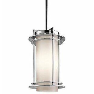 Nicholas 1-Light Outdoor Pendant