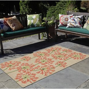 Dazey Lily Hand-Tufted Beige/Red Indoor/Outdoor Area Rug