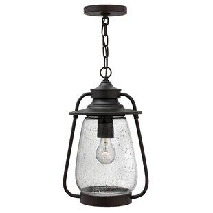 Hinkley Lighting Calistoga 1-Light Outdoor Hanging Lantern