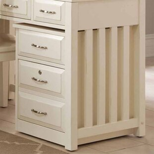 Darby Home Co Nicolette 2-Drawer Mobile File Cabinet