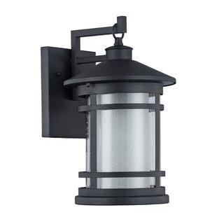 Helfer 1-Light Outdoor Wall Lantern
