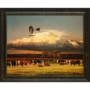 Summer Pastures By Bonnie Mohr Framed Painting Print