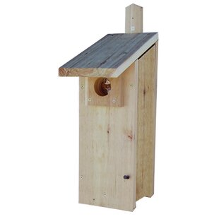 Stovall Nest Box 22 in x 1..