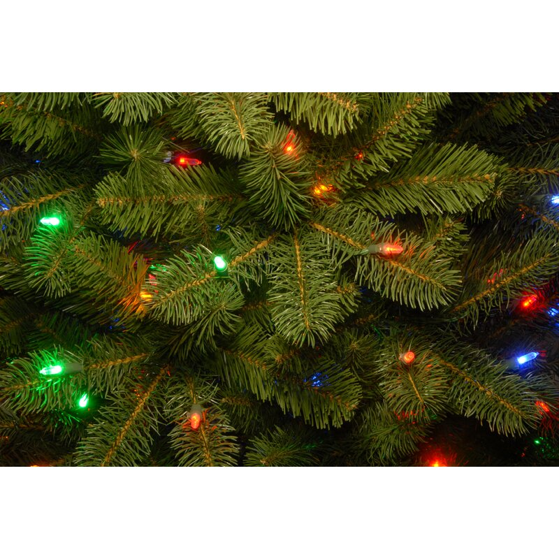 Downswept Douglas 6 5 Green Fir Artificial Christmas Tree With 650 Multicolor Lights Includes Stand