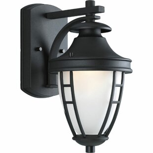 Reviews Triplehorn 1-Light Outdoor Styled Wall Lantern By Alcott Hill