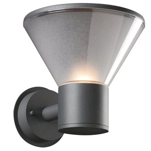 Affordable Iraan 1-Light Outdoor Sconce By Winston Porter