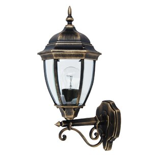 Carone Outdoor Wall Lantern By Ophelia & Co.