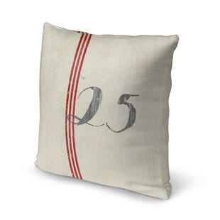 25 Throw Pillow