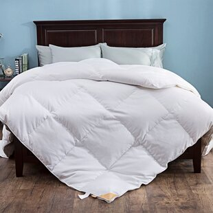 600 Fill Power Winter Down Comforter