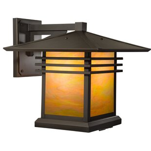 Price Check Sharp 1-Light Outdoor Wall Lantern By Loon Peak