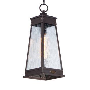 Killebrew 1-Light Outdoor Lantern
