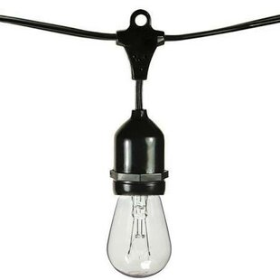 Compare & Buy 15-Light 48 ft. Globe String Lights By Bulbrite Industries
