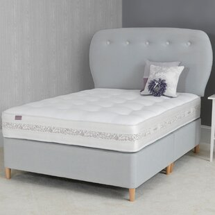 Evie Divan Base By Norden Home