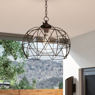 Wyckoff 1-Light Outdoor Pendant