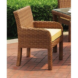 https://secure.img1-fg.wfcdn.com/im/90156997/resize-h310-w310%5Ecompr-r85/1654/16543724/java-dining-arm-chair-with-cushion.jpg