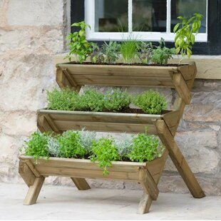 Stepped Herb Wooden Vertical Garden By WFX Utility