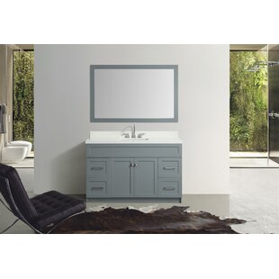 Bargain Truesdale 55 Single Bathroom Vanity Set With Mirror By Winston Porter