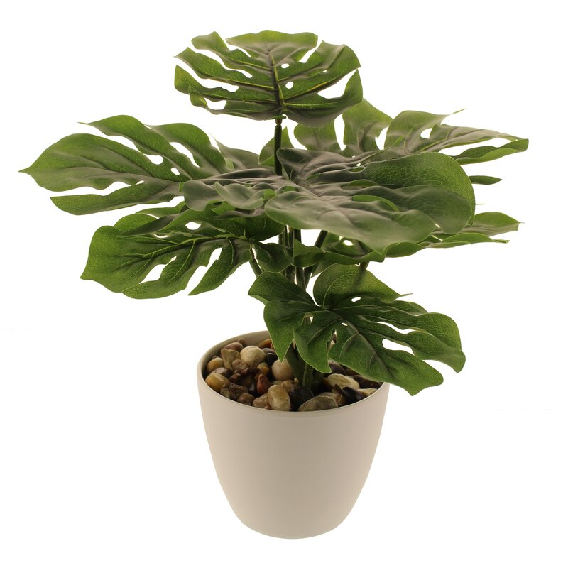 The Seasonal Aisle 36cm Artificial Philodendron Plant In Pot Reviews