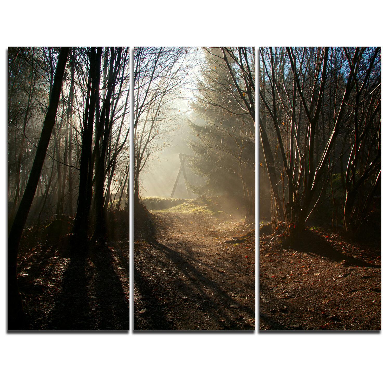 Autumn Fall Color Fog Canyon Professional Photograph Print Photo Poster Canvas