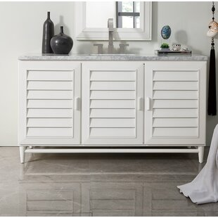 Neuhaus 60 Single Bathroom Vanity Set by Beachcrest Home
