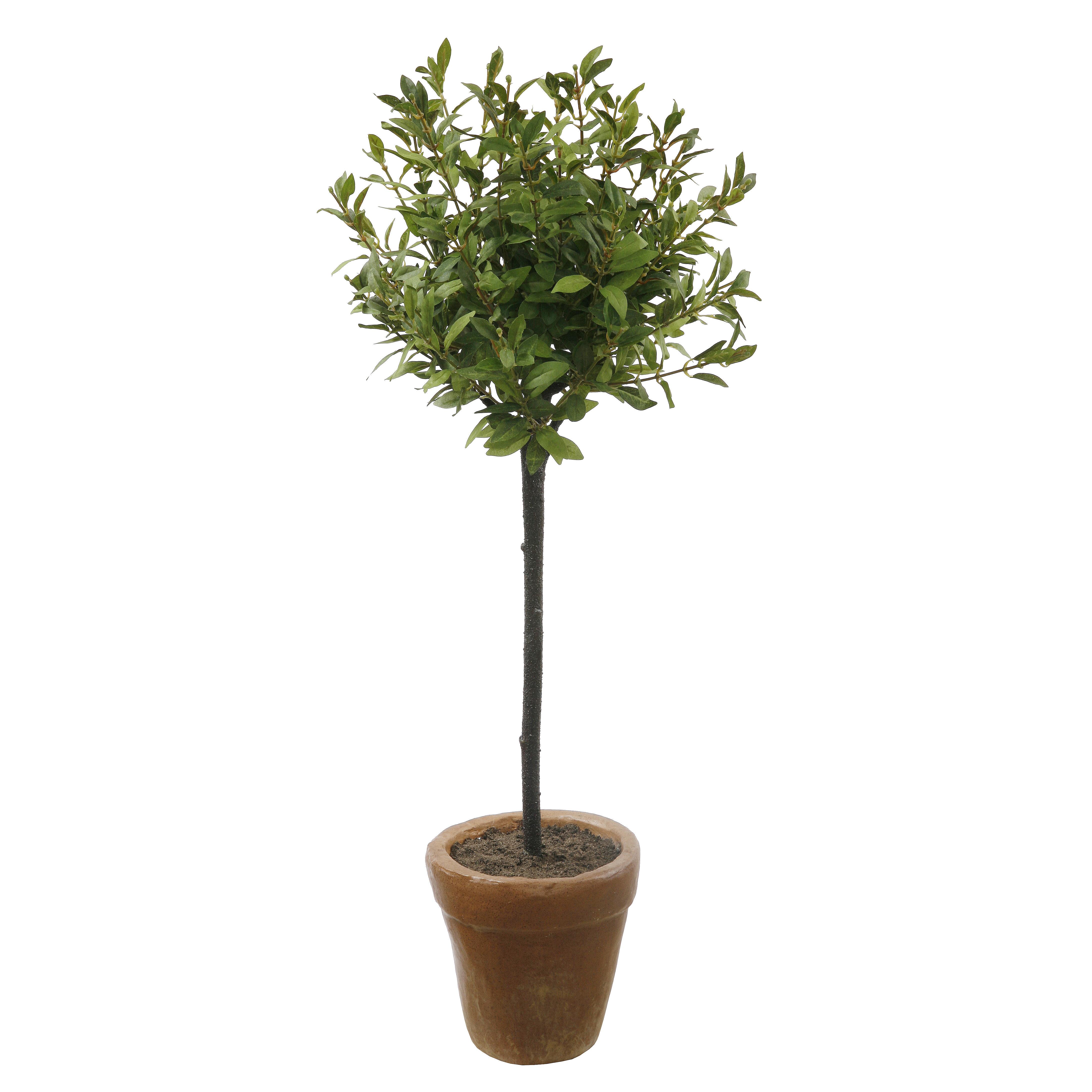 Winward Silks Myrtle Foliage Topiary In Pot Reviews Wayfair