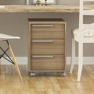 Small Storage Cabinet | Wayfair