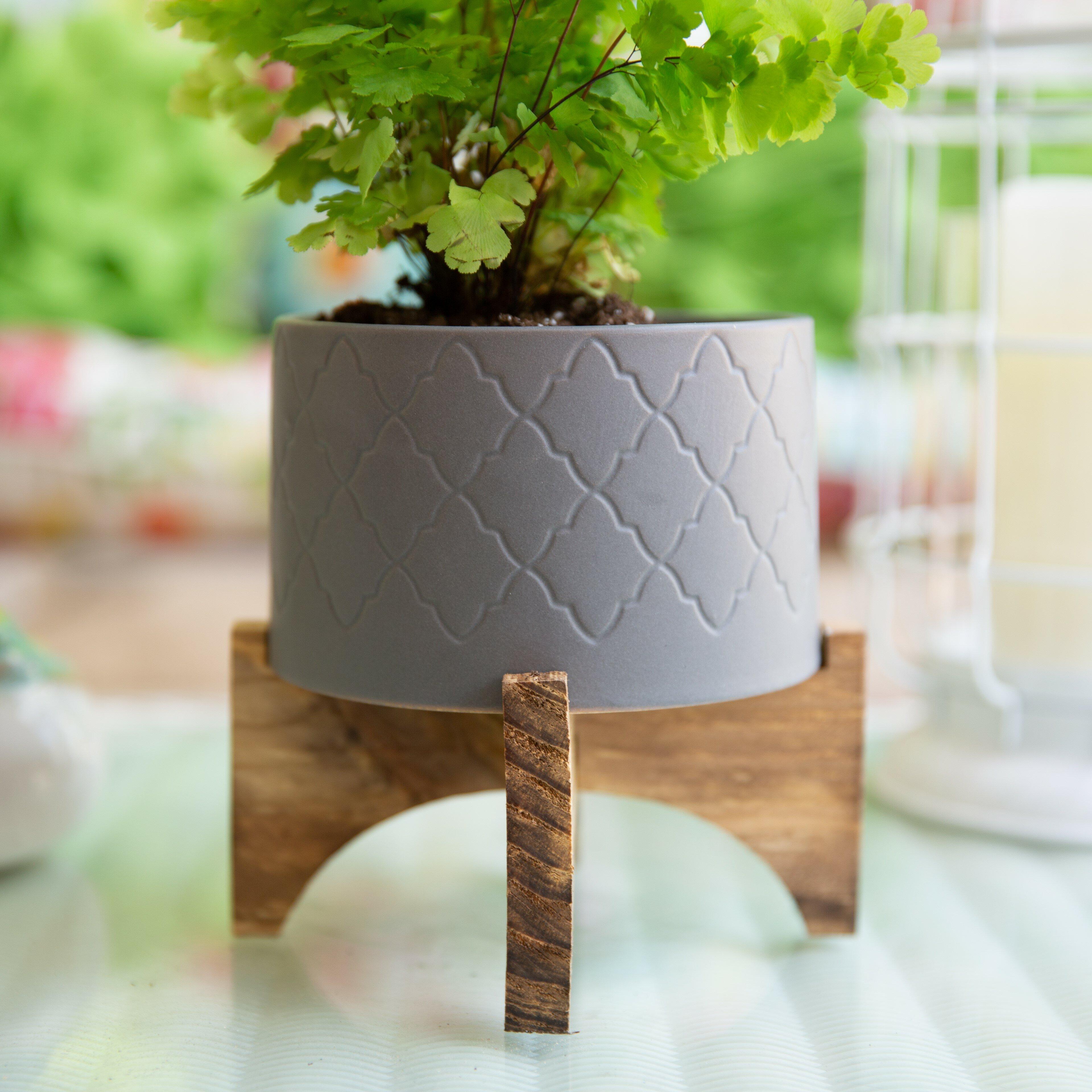 Williston Forge Bohn Ceramic Pot Planter Reviews Wayfair