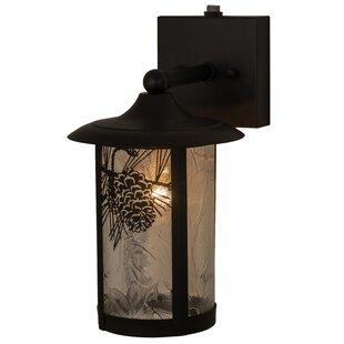 Read Reviews Greenbriar Oak 1-Light Outdoor Wall Lantern By Meyda Tiffany