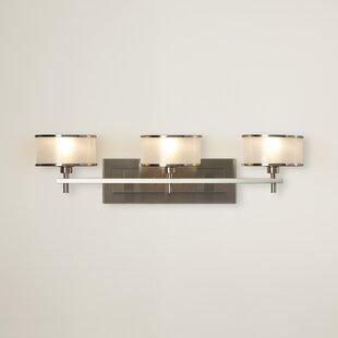 Darby Home Co Millerton 3-Light Vanity Light