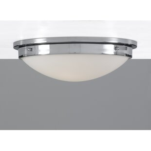 Newborn 2-Light Flush Mount by Ebern Designs