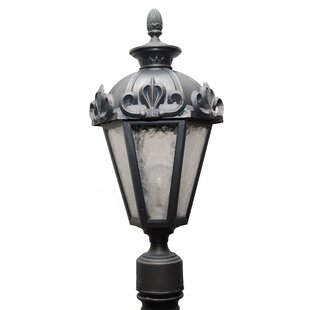 Alcott Hill Petrey 1-Light Lantern Head
