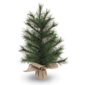 faux pine christmas tree in burlap base - Table Top Christmas Trees
