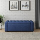 Amron Charcoal Flip Top Storage Bench by Latitude Run®