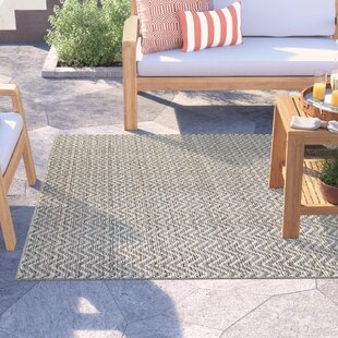 Barrington Light Brown/Ivory Indoor/Outdoor Area Rug