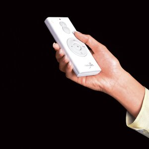 Hand Held Remote Control System with Wall Holster