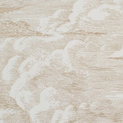 "Cloud Toile Matte 180"" L x 54"" W Wallpaper Roll (Set of 2) Schumacher Color: Gold"