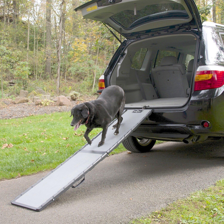 Tucker Murphy Pet Caelan 72 Pet Ramp Reviews Wayfair