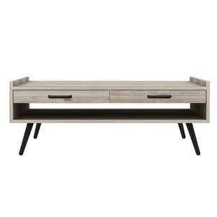 Flint Wood Coffee Table with Storage by Union Rustic