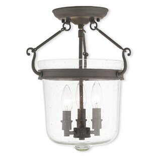 Darby Home Co Acton 3-Light Urn Pendant