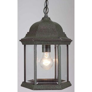 Volume Lighting 1-Light Outdoor Hanging Lantern