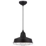 Ashly 1-Light LED Dome Pendant